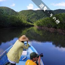 西表島遊覧・観光チャーターガイドツアー