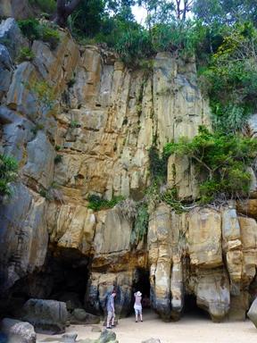 西表島の洞窟探検・遊覧観光